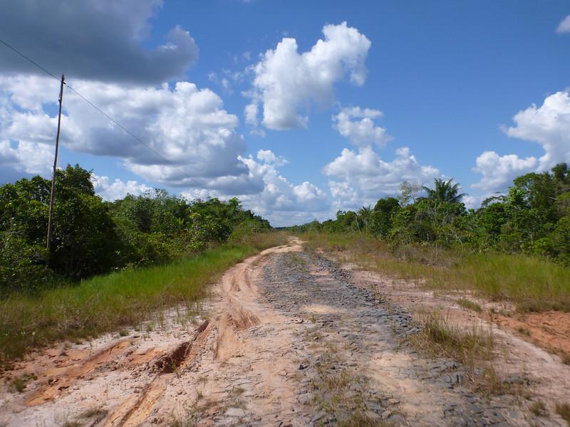 On BR-319, Rodavia Fantasma on the way to Manaus