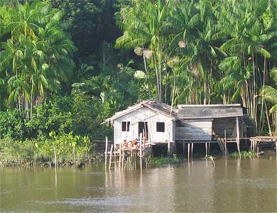 Wonen in de Amazone. Brazilië.