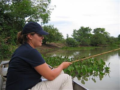 Piranha vissen in de Pantanal, Brazilië.