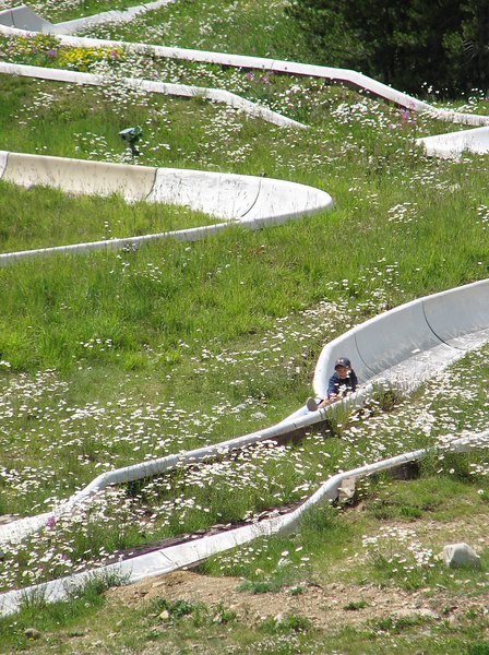 The Alpine Slide at Peak 8. Highly recommended!