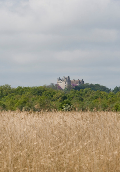 Dominating the Brenne region is the Chateau du Bouchet near Rosnay - here seen from the reed marsh of the Montiacre lake