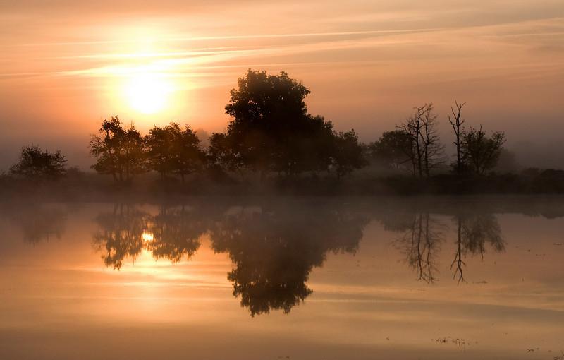 Sunrise in Brenne