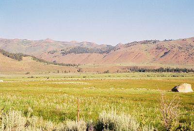 7/6/05 Pastures off Twin Lakes Rd.