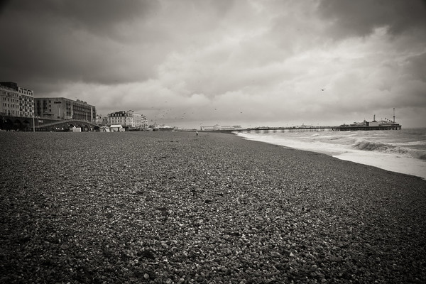 Brighton, U.K. Shannon Corr Photography