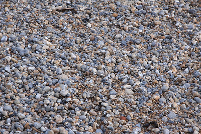 No sandy beach here - just pebbles!