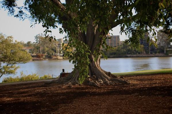 South River Brisbane1
