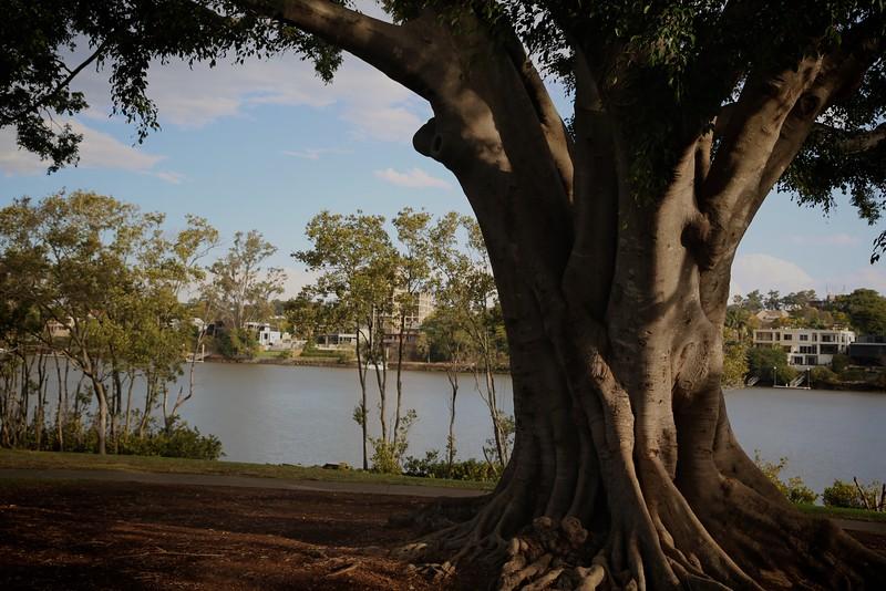 South River Brisbane3