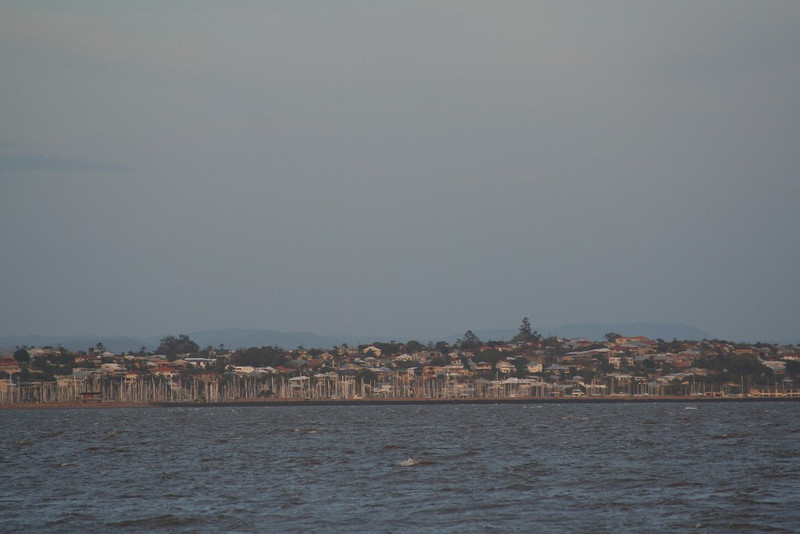 Manly from King Island 015