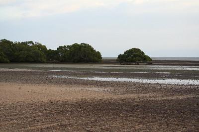 King Island 025