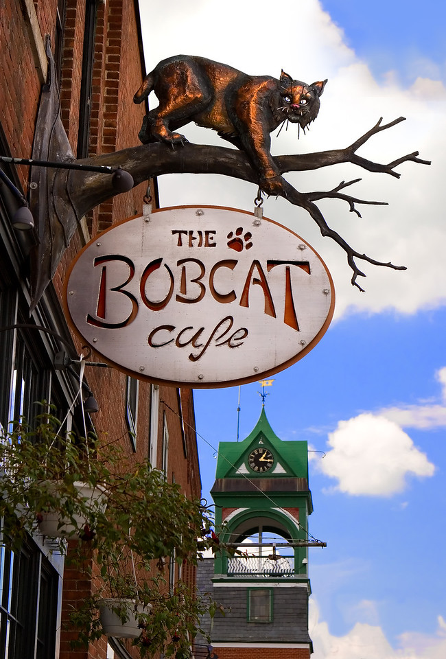 "<b> <center>   <font size = ""3"">     <font color = yellow>  Bobcat Cafe Sign      </font color=yellow>   </font size = ""3""> </center>      <font color=white>   <font size = ""2"">  <br> The unique Bobcat Cafe sign on the south side of Main Street with Holley Hall clock tower in the background.  Renovation of the Bobcat was financed through sale of shares to Bristol townspeople. <br>      </font color = white>   </font size = ""2"">"