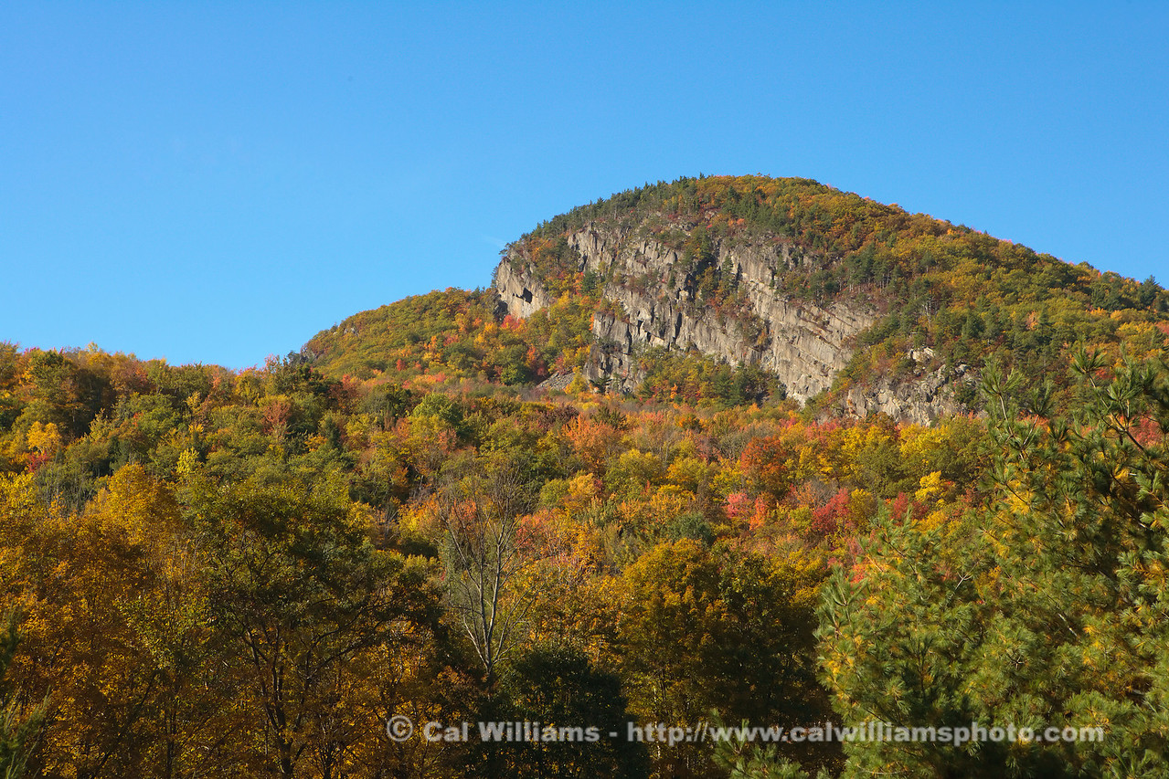 "<b> <center>   <font size = ""3"">     <font color = yellow>  Deerleap Cliffs       </font color=yellow>   </font size = ""3""> </center>    <font size = ""2"">     <font color=white>  <br> These rugged cliffs on the east side of Deerleap Mountain are nesting ground for several pair of perigrine falcons.  Trails to the cliffs are closed and monitored during nesting season to assure that the birds are not disturbed. <br>      </font color = white>   </font size = ""2"">"