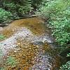 Creek. Cliff Gilker Park, Roberts Creek, BC