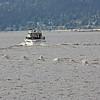 Boat and wake, English Bay