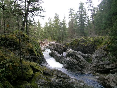 Even more of the Qualicum Falls Area