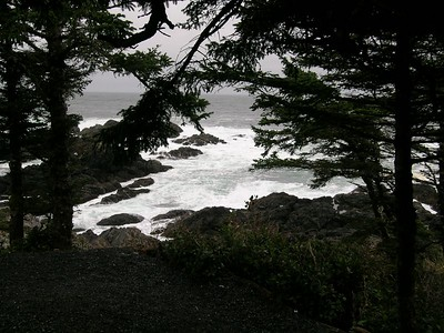 A view of the ocean from the Pacific Rim trail just outside the Village of Uclulet on Vancouver Island.