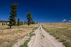 Dirt road heading north from Gang Ranch. Remote area of Cariboo - Chilcotin country, BC, Canada