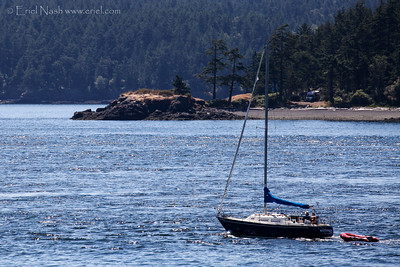Sidney-Anacortes-Ferry-20140715-19