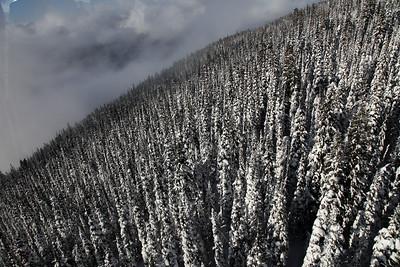 Whistler-20121124-64-1