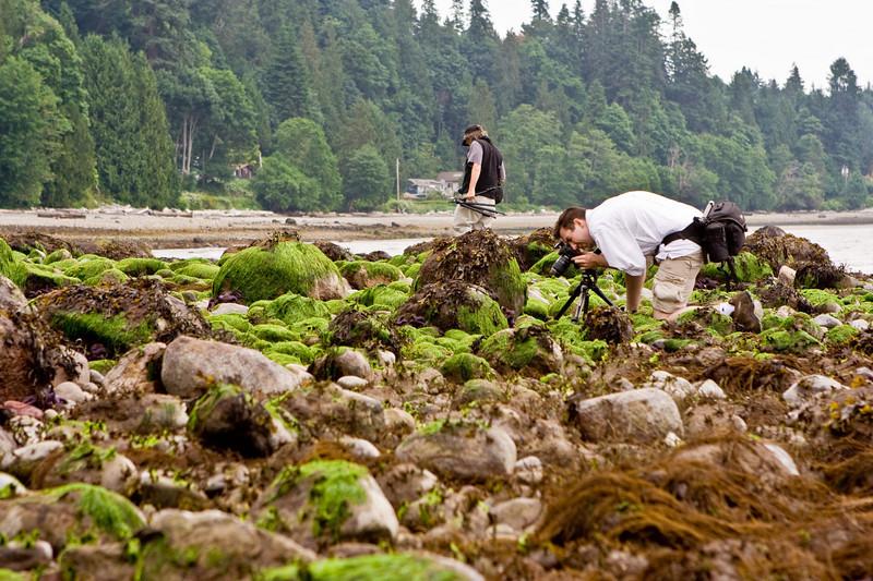 Low tide photo shoot.  BC gets 15' tides.