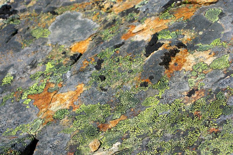 Close-up of crazy rock colors