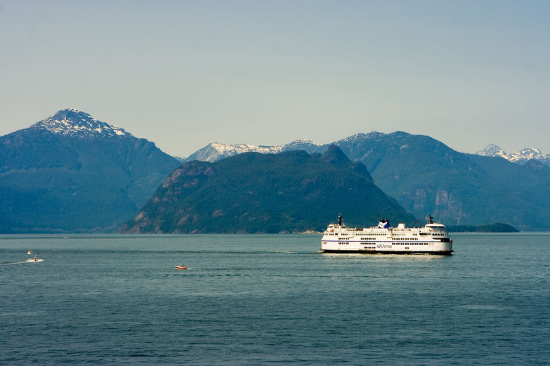 another ferry or cruise ship