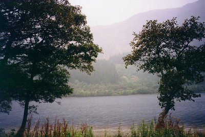 View while driving along one of the many lochs in Scotland