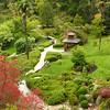 Japnese Garden