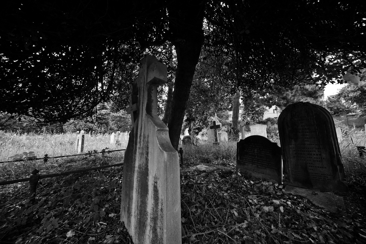 Brompton Cemetery, London, U.K. Shannon Corr Photography LLC