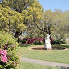 Azalea walkway at Brookgreen Gardens