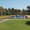 Palmetto Garden