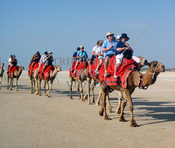 Camel riding at Cable Beach in Western Australia.
