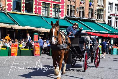 Bruges (451 of 1022)