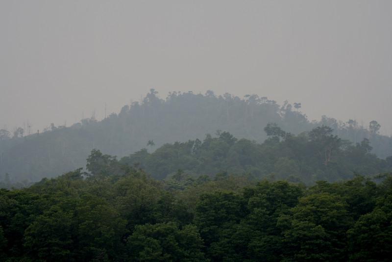 Smoke haze from uncontrolled forest fires in Kalimantan blankets the Bruneian jungle, near Bandar Seri Begawan.
