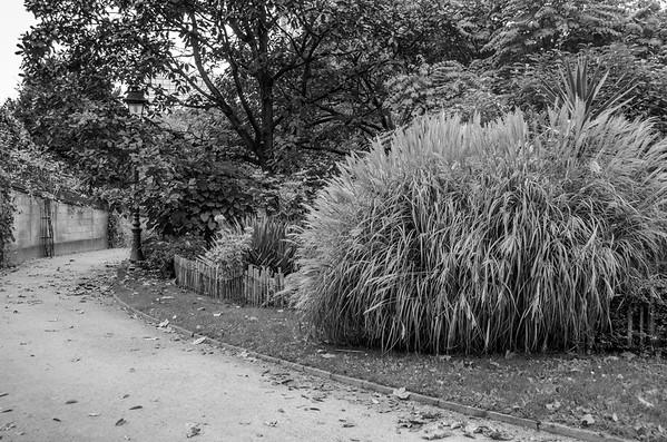 Botanic Garden Brussels