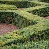 Bush Maze