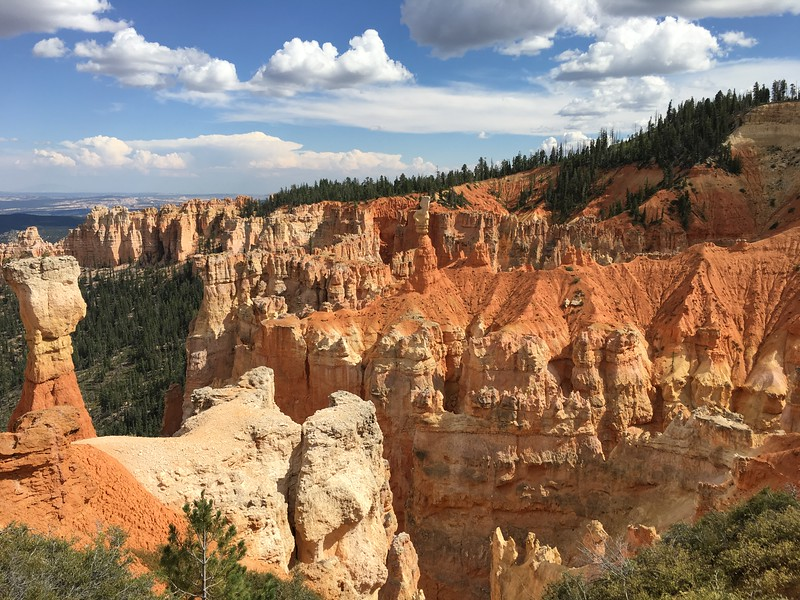 Glorious canyons