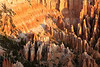 Bryce Canyon National Park<br /> <br /> Photo by Dennis