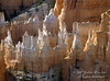 Bryce Canyon National Park, Utah, USA, North America