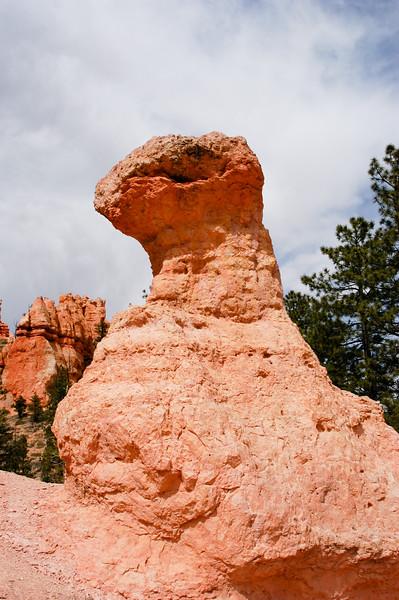 A Creature in Stone-0026