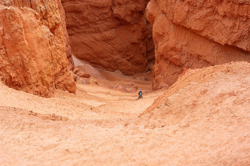 Switchback Trail to the Canyon Floor-0016