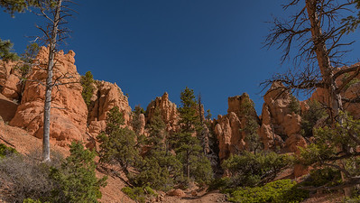 Red Canyon ~ Just before Bryce