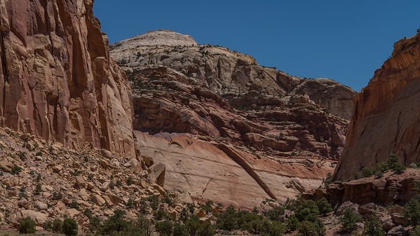Capitol Reef ~ Capitol Gorge