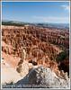 A view of the hoodoos of Bryce National Park in Utah