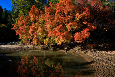 Zion Nation Park, UT