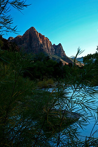 North Fork Virgin River in Zion Nation Park, UT