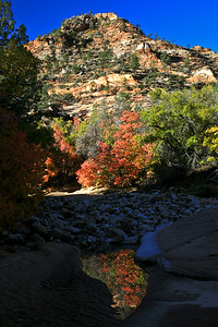 Zion Nation Park, UT