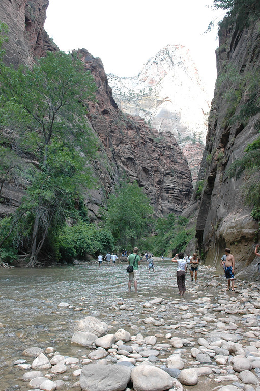 Zion National Park <br /> Riverside Walk <br /> Virgin River