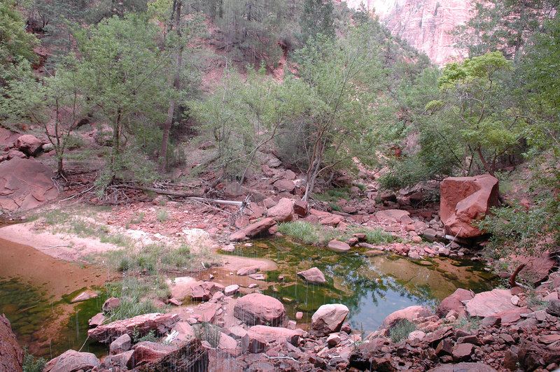 Zion National Park<br /> Kayenta Trail<br /> Lower Emarld Lake