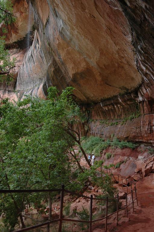Zion National Park<br /> Kayenta Trail