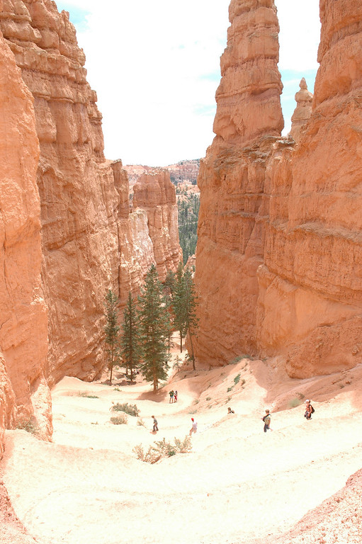 Bryce Canyon National Park<br /> Navajo Loop/Queen's Garden Trail
